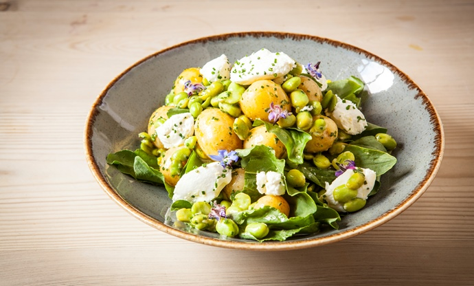 Baby broad bean, new potato and fresh goat's cheese salad with chive flowers