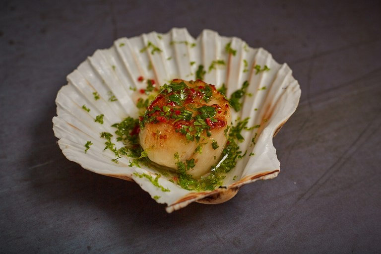 Coriander, lime and chilli scallop canapés