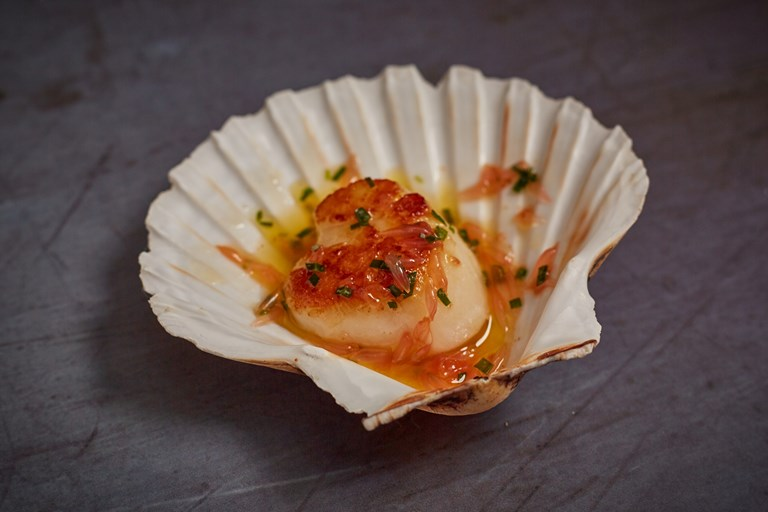 Scallop, brown butter, pink grapefruit and tarragon canapé