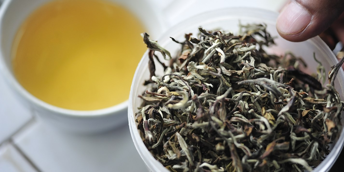 The quest to find the best Darjeeling tea in the world