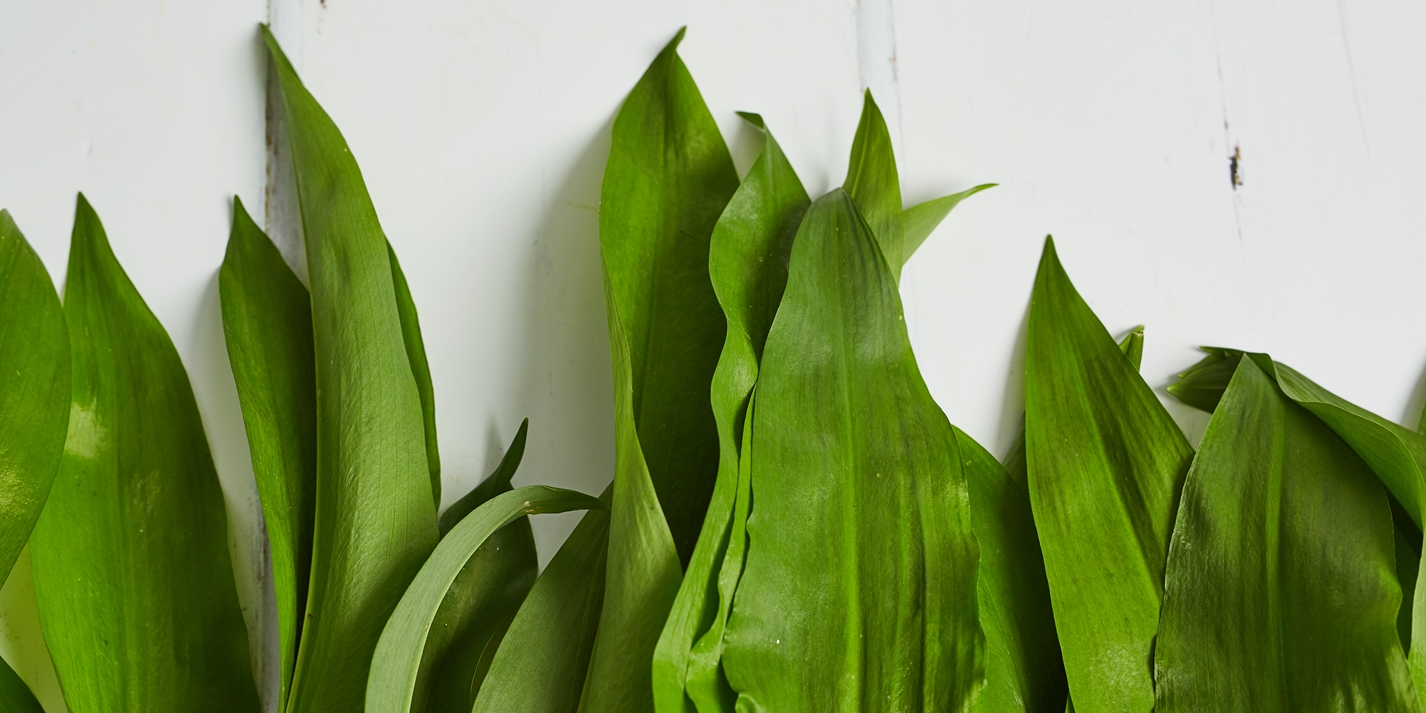 How to blanch wild garlic
