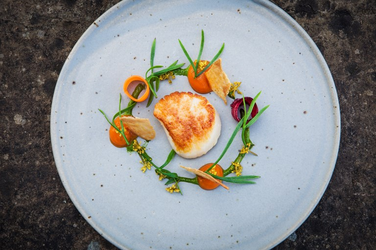 Orkney scallop with fermented carrots, pickled alexanders, rock samphire and chicken skin