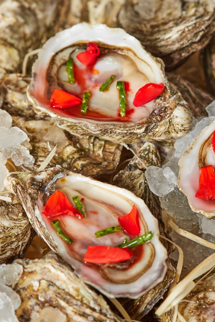 Tipsy Morecambe Oysters With Begonias Recipe Great British Chefs