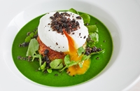 5 of the best watercress recipes