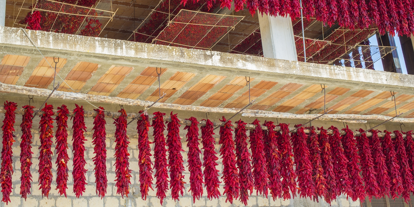 Peperone di Senise: the sweet peppers of Basilicata
