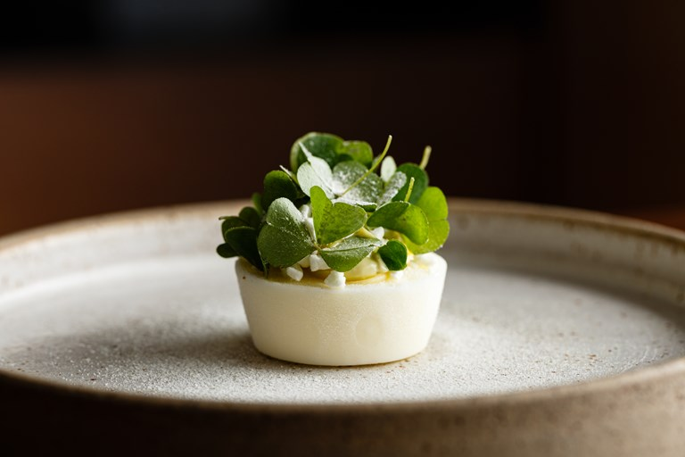 Frozen yoghurt, pine, wood sorrel