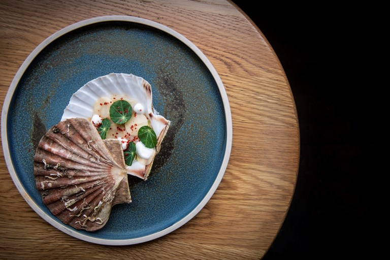 Raw Orkney scallop with green apple, coconut and nasturtium