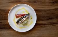 Torched mackerel with rhubarb and fennel